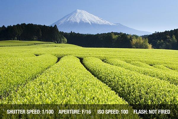 landscape-camera-mode-1