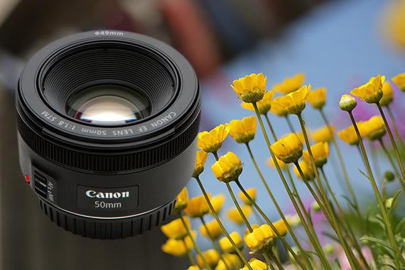 Đánh Giá Dùng Thử EF50mm f/1.8 STM